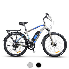 E-City Bike Argento Alpha